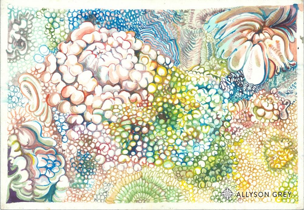 Bloom Bubbles